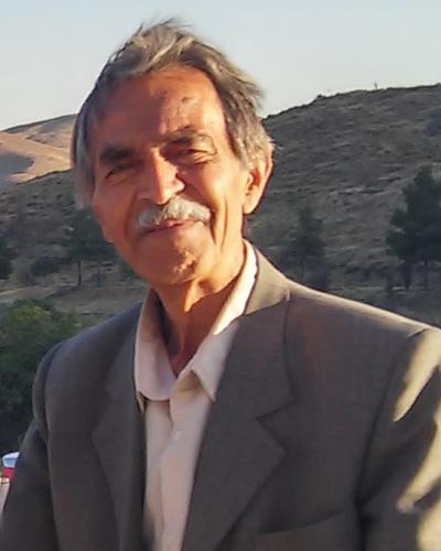 Behzad Sadeqi Policy Advisor